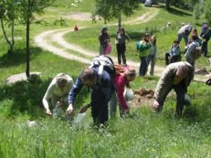 Corso per il riconoscimento, la raccolta e la cucina delle piante ...